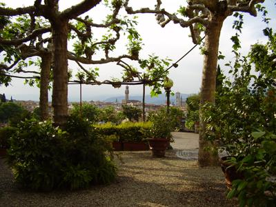 What to do in Florence: the Rose and Iris Gardens