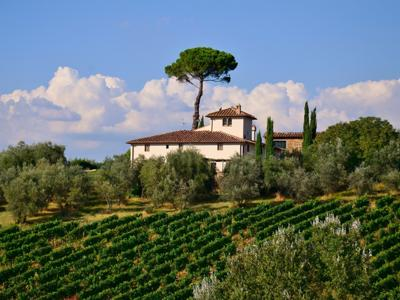 What to see in Tuscany: Chianti, the home of wine